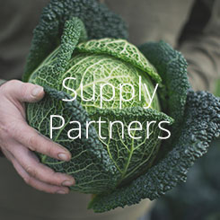 Rinuccini Supply Partners