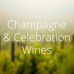 Rinuccini Champagne & Celebration Wines