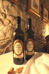 wine-of-the-month-san-andres